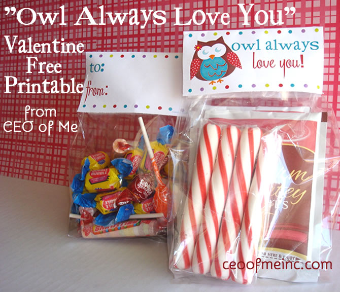 Owl Always Love You Free Valentine's Printable Bag Toppers and Tags