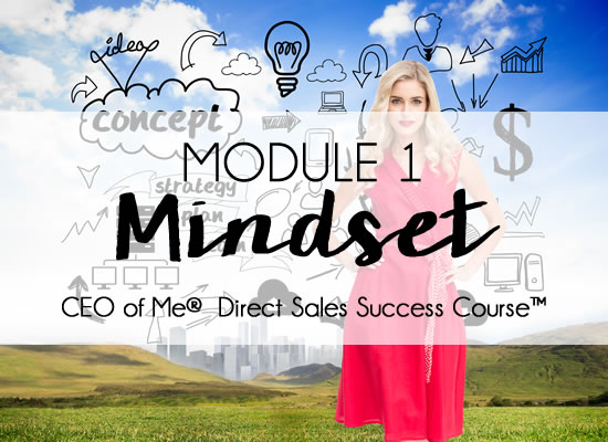 The CEO's Mindset: How to Break Through to the Next Level ...
