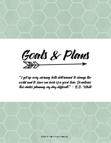 Section 1 Goals and Plans