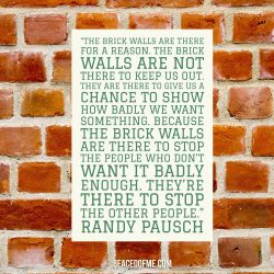 brick walls quote